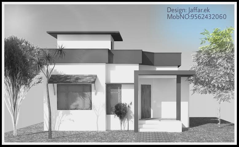 750 sq ft contemporary home design for small plot for Home design 750 sq ft