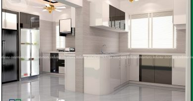 kerala house designs interiors kitchen